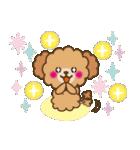 トイプードルの日常【夏♪】(個別スタンプ:34)