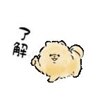 ほんわかぽめ<日常>(個別スタンプ:05)