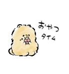 ほんわかぽめ<日常>(個別スタンプ:13)
