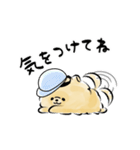 ほんわかぽめ<日常>(個別スタンプ:38)