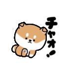 まる柴っち!(個別スタンプ:2)