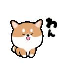 まる柴っち!(個別スタンプ:4)