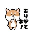 まる柴っち!(個別スタンプ:8)