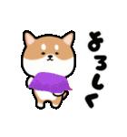 まる柴っち!(個別スタンプ:12)