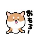 まる柴っち!(個別スタンプ:16)