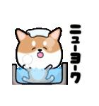 まる柴っち!(個別スタンプ:18)