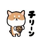 まる柴っち!(個別スタンプ:22)