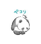 やさしい動物 1(個別スタンプ:05)