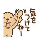 トイプーのぷう太郎 毎日使える編(個別スタンプ:04)