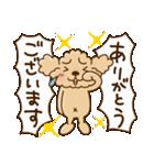 トイプーのぷう太郎 毎日使える編(個別スタンプ:10)