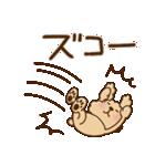 トイプーのぷう太郎 毎日使える編(個別スタンプ:15)