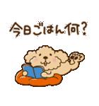 トイプーのぷう太郎 毎日使える編(個別スタンプ:28)