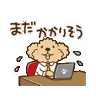 トイプーのぷう太郎 毎日使える編(個別スタンプ:31)