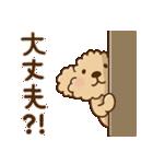 トイプーのぷう太郎 毎日使える編(個別スタンプ:32)