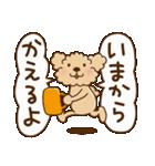トイプーのぷう太郎 毎日使える編(個別スタンプ:34)