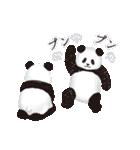 今日のパンダ(毎日)(個別スタンプ:08)