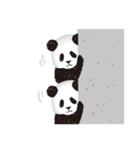 今日のパンダ(毎日)(個別スタンプ:13)