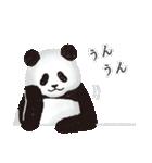 今日のパンダ(毎日)(個別スタンプ:28)