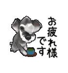 動くよ!シュナウザー(個別スタンプ:5)