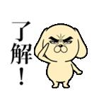 目ヂカラ☆わんこ5【毎日使える】(個別スタンプ:05)
