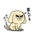 目ヂカラ☆わんこ5【毎日使える】(個別スタンプ:13)
