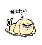 目ヂカラ☆わんこ5【毎日使える】(個別スタンプ:15)