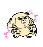 目ヂカラ☆わんこ5【毎日使える】(個別スタンプ:17)