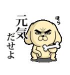 目ヂカラ☆わんこ5【毎日使える】(個別スタンプ:31)
