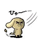 目ヂカラ☆わんこ5【毎日使える】(個別スタンプ:40)