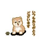 よちよち秋田犬2(心遣い)(個別スタンプ:1)