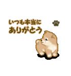 よちよち秋田犬2(心遣い)(個別スタンプ:2)
