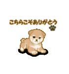 よちよち秋田犬2(心遣い)(個別スタンプ:3)
