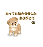 よちよち秋田犬2(心遣い)(個別スタンプ:4)