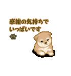 よちよち秋田犬2(心遣い)(個別スタンプ:8)