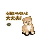 よちよち秋田犬2(心遣い)(個別スタンプ:9)