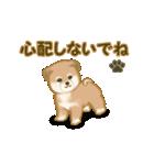 よちよち秋田犬2(心遣い)(個別スタンプ:10)