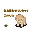 よちよち秋田犬2(心遣い)(個別スタンプ:12)