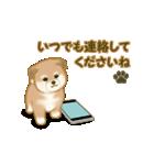 よちよち秋田犬2(心遣い)(個別スタンプ:18)