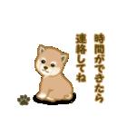 よちよち秋田犬2(心遣い)(個別スタンプ:19)