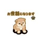 よちよち秋田犬2(心遣い)(個別スタンプ:21)
