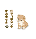 よちよち秋田犬2(心遣い)(個別スタンプ:24)