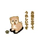 よちよち秋田犬2(心遣い)(個別スタンプ:28)