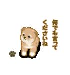 よちよち秋田犬2(心遣い)(個別スタンプ:29)