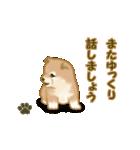 よちよち秋田犬2(心遣い)(個別スタンプ:30)
