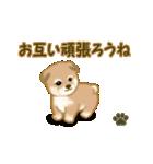 よちよち秋田犬2(心遣い)(個別スタンプ:31)