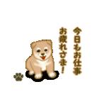 よちよち秋田犬2(心遣い)(個別スタンプ:34)