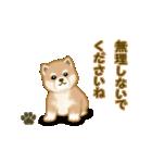 よちよち秋田犬2(心遣い)(個別スタンプ:35)
