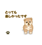 よちよち秋田犬2(心遣い)(個別スタンプ:39)