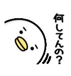 うるせぇトリ★毎日使える(個別スタンプ:29)