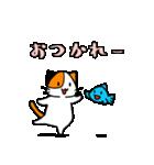 さかにゃあ(個別スタンプ:01)